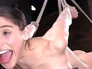 Darkhair In Upside Down Suspension Whipped